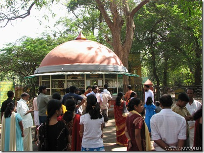 ticket counter at thrissur zoo