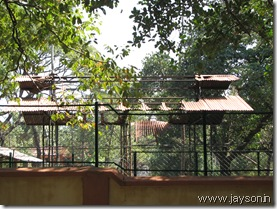 damaged structures at thrissur zoo