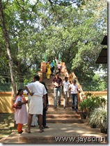 over bridge at thrissur zoo