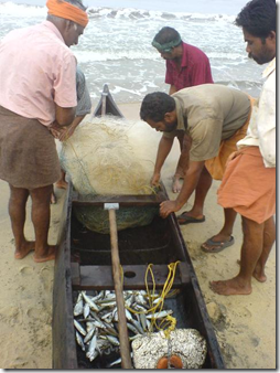 Cherai Beach - fishing