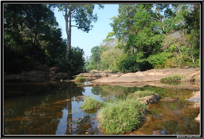 kulathupuzha river