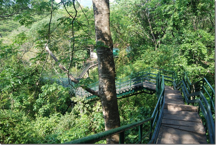 Elevated walkway in Thenmala