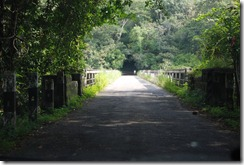 Vazhachal bridge