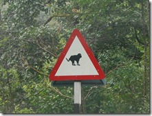 Rare road sign in India